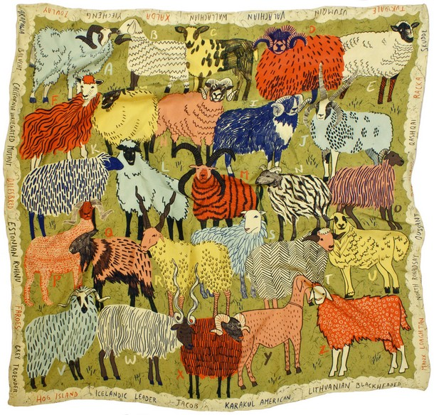 A-Z of Rare, Wool-production Sheep Breeds-